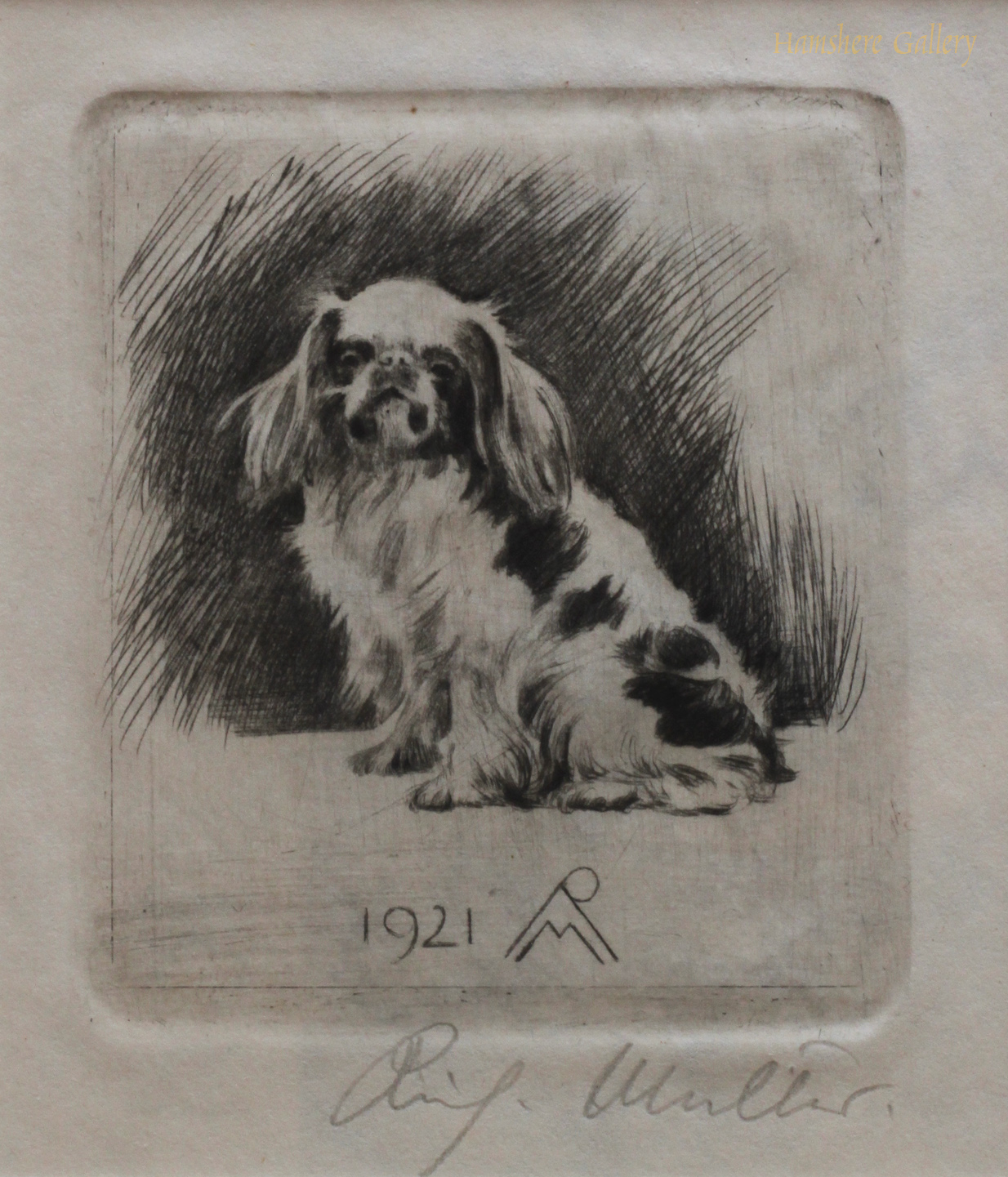 Click to see full size: A dry-point miniature etching of an English Toy Spaniel / King Charles Spaniel by Richard M�ller  (German, 1874-1954)  SOLD
