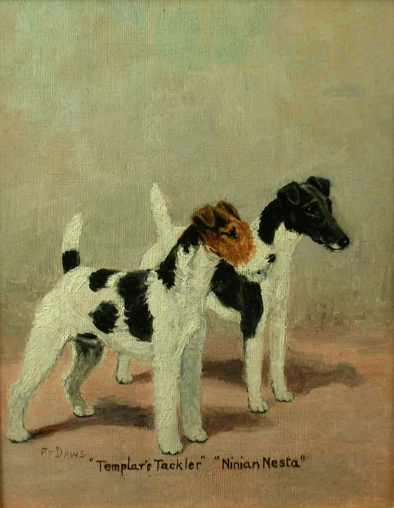 Click to see full size: Fox terrier by F. T. Dawes