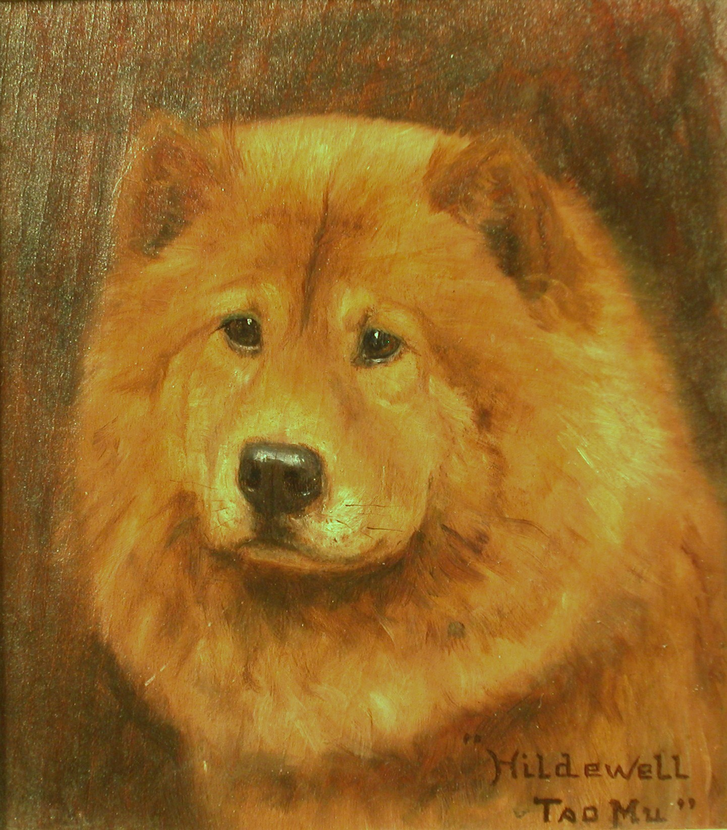 Click to see full size: Chow Chow by Monica Gray