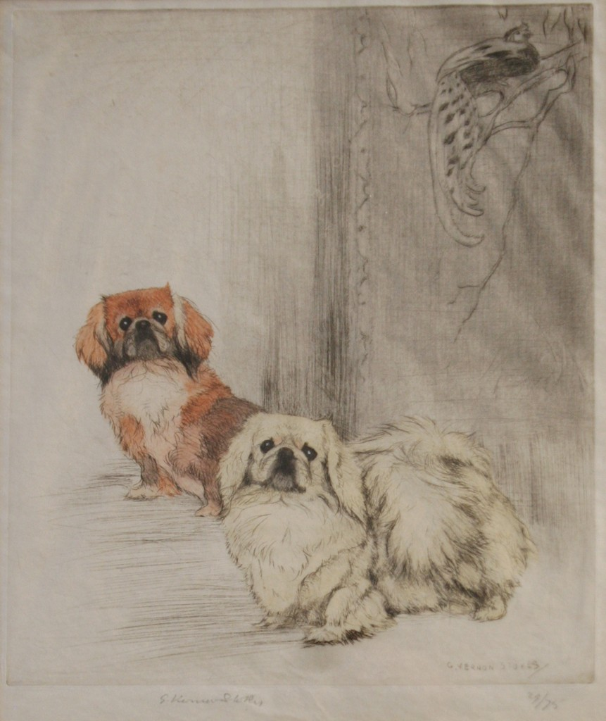 Click to see full size: Pekingese etching by George Vernon Stokes RA