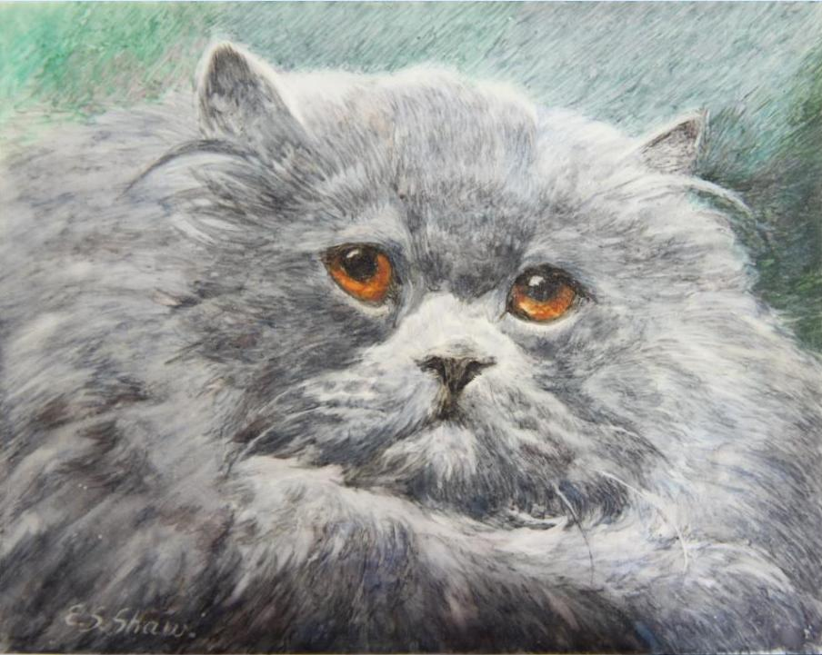 "Click to see full size: ""Ch. Raleigh"" a Blue Persian cat, miniature in watercolour by Mrs Ellen Sylvia Shaw (English, 1868-1947)"