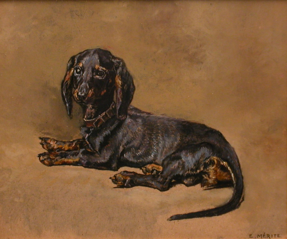 Click to see full size: Dachshund by E. Merite