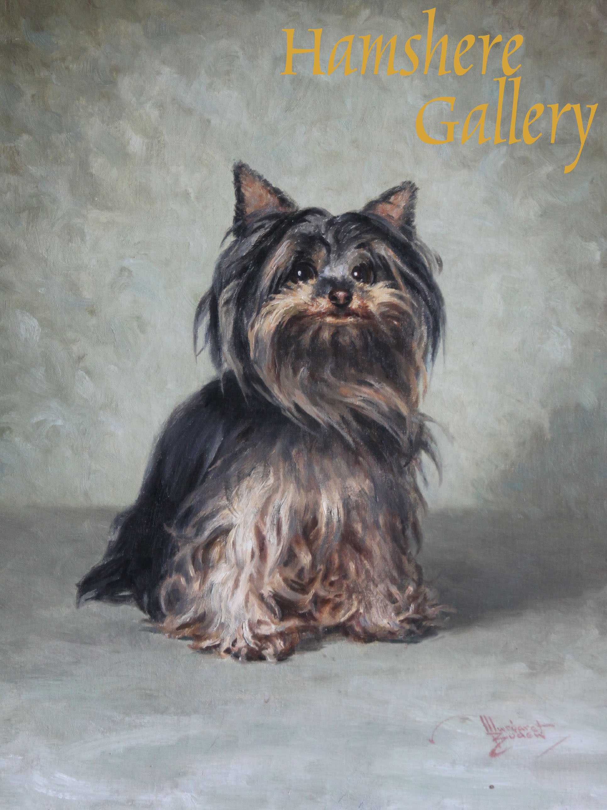 Click to see full size: Oil of a Yorkshire Terrier by Margaret Boden