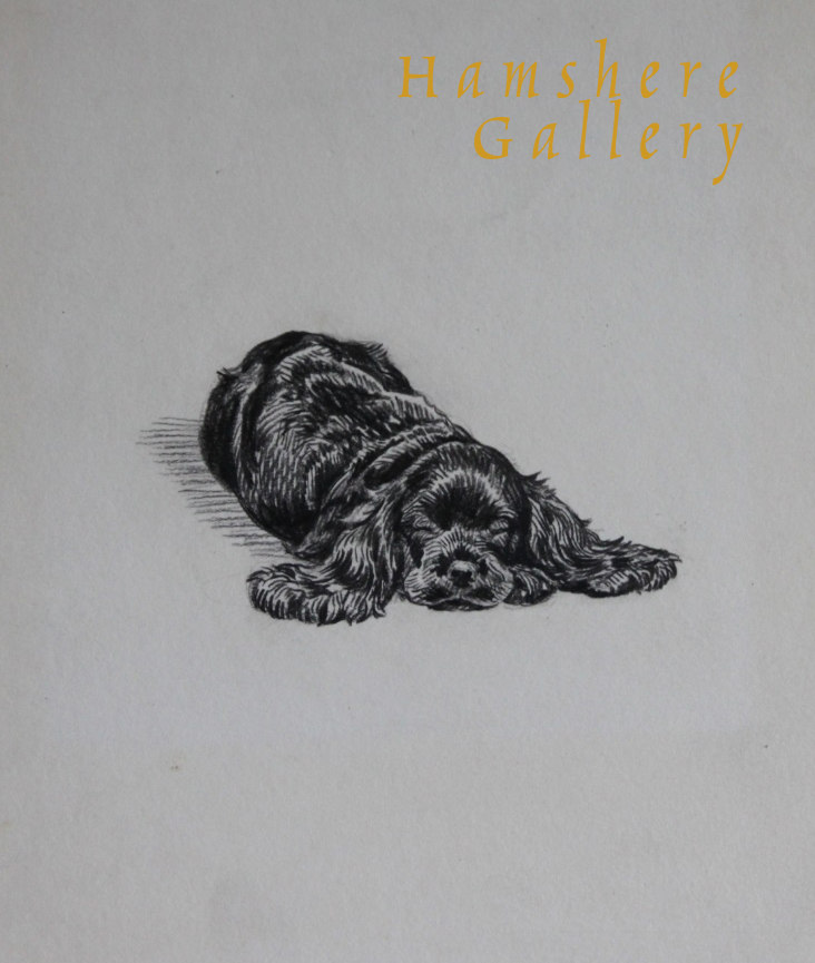 "Click to see full size: ""Bonny's Boy"" Cocker Spaniel drawing by Marguerite Kirmse"