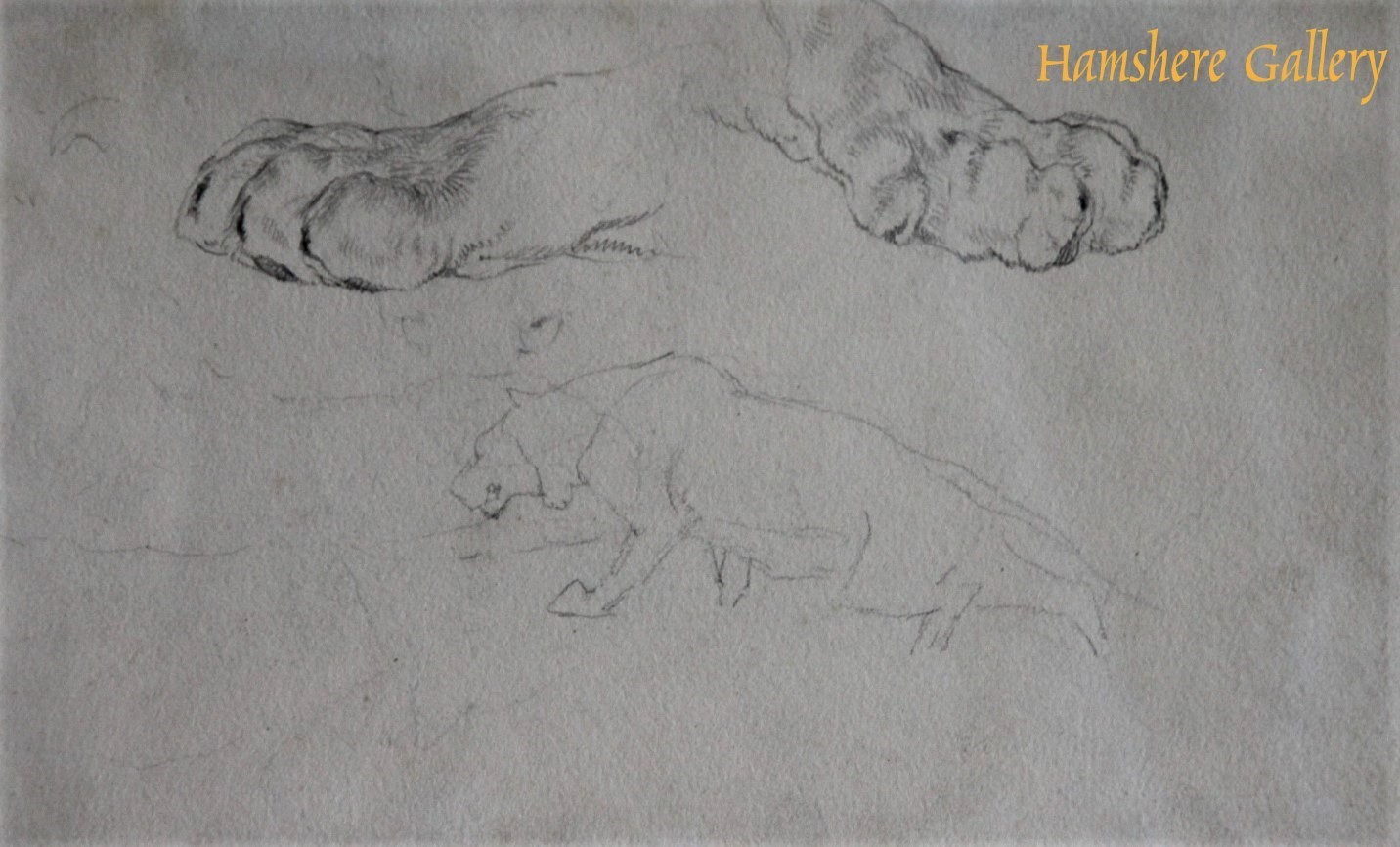 Click to see full size: A pencil study of tiger's paws and a tiger by Sir Edwin Henry Landseer R.A. Trafalgar Square- A pencil study of tiger's paws and a tiger by Sir Edwin Henry Landseer R.A. Trafalgar Square
