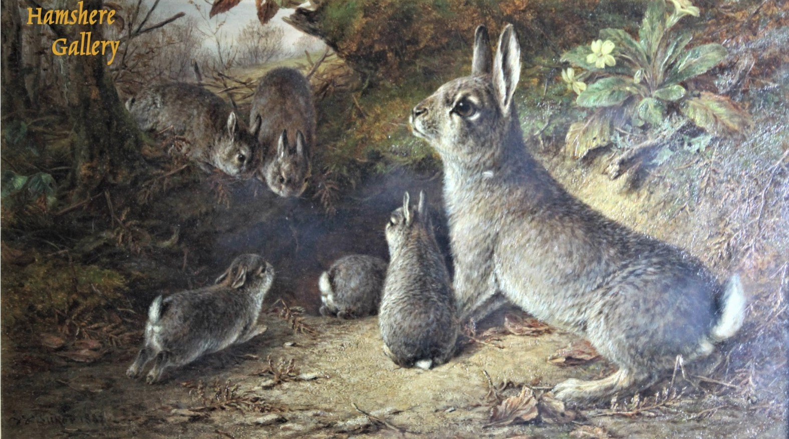 Click to see full size: Oil of a fluffle of rabbits in woodland setting by William Luker jnr., RBA