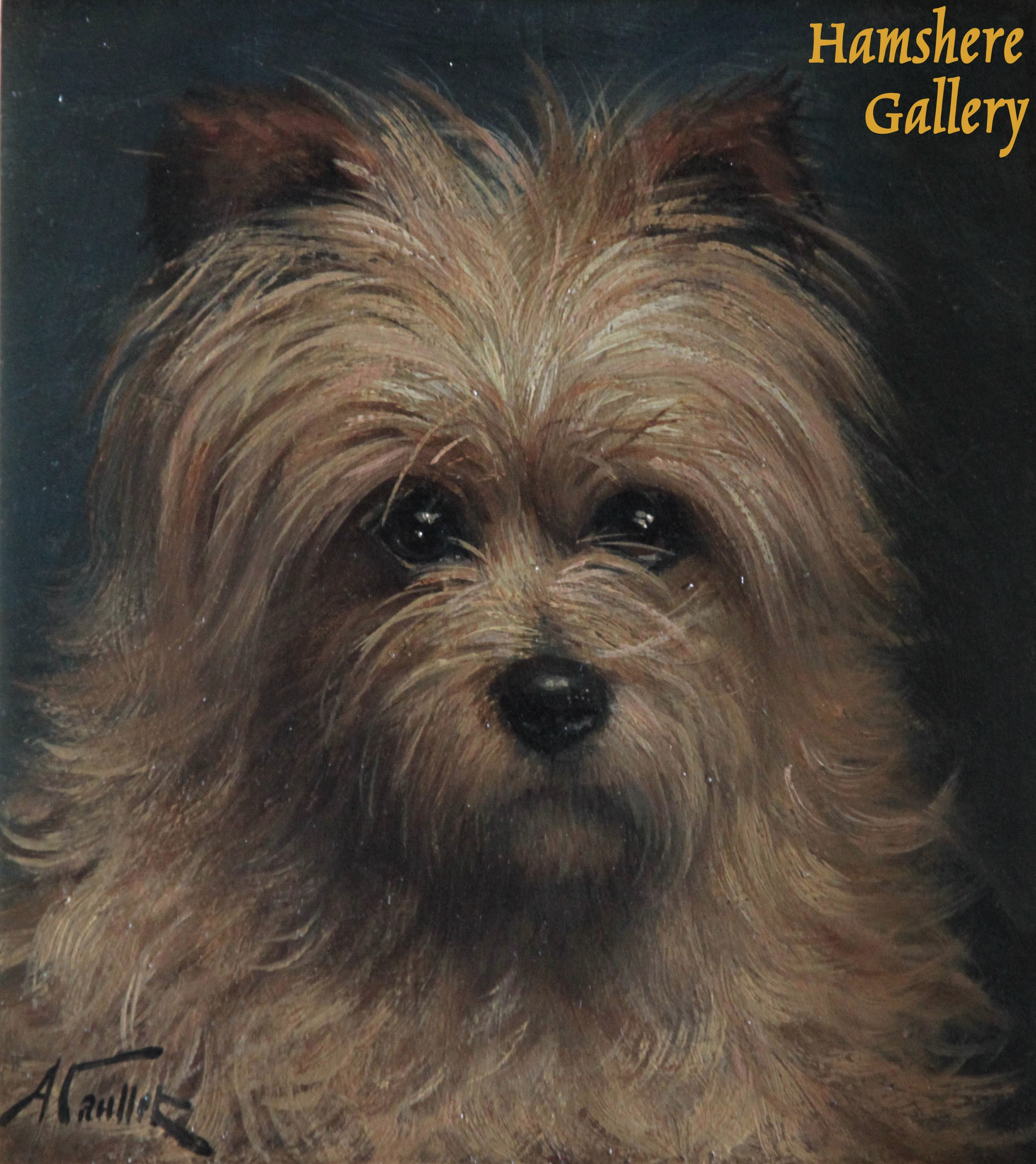 Click to see full size: Norfolk Terrier type oil by Albert Caullet