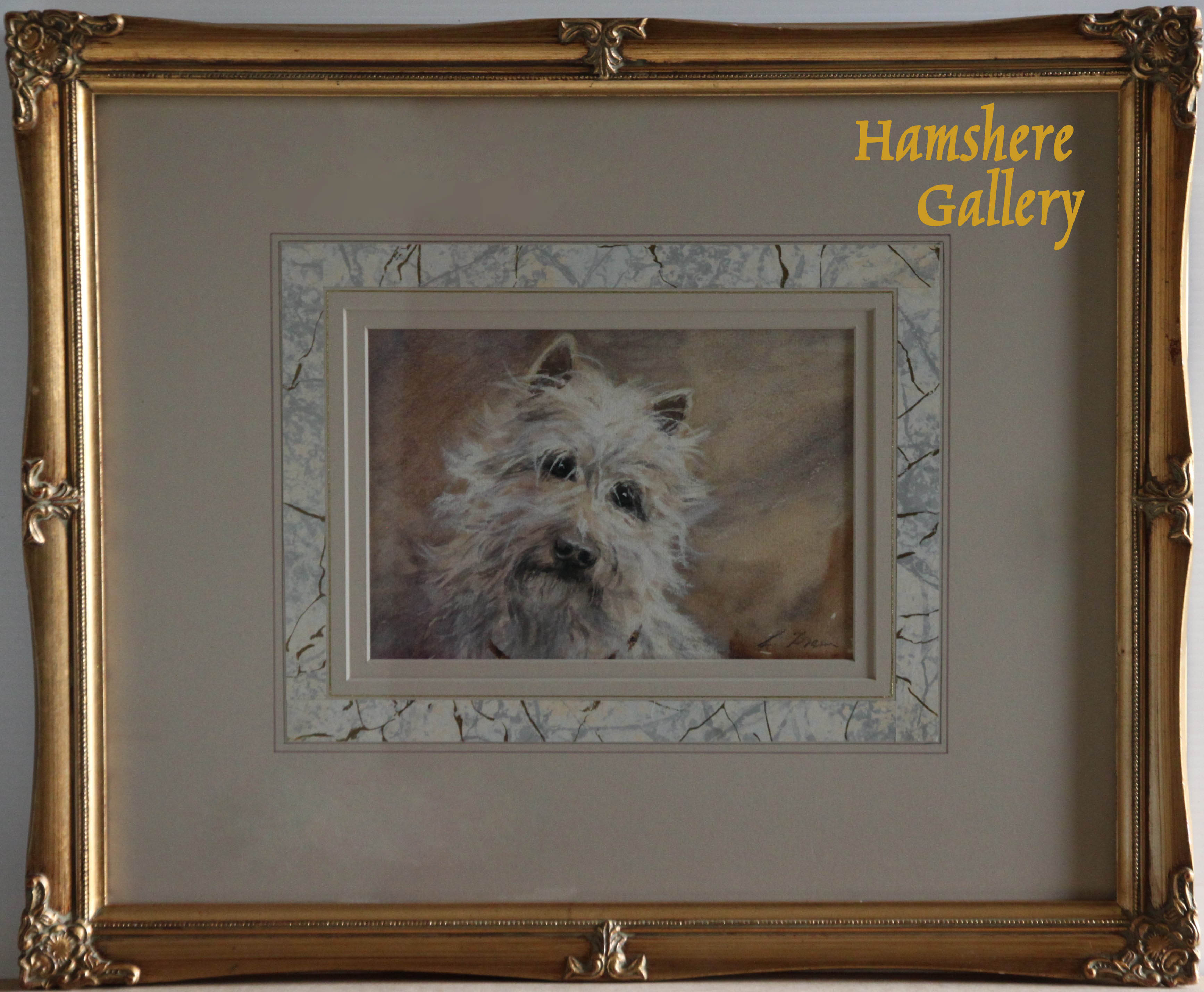 Click for larger image: Gouache of a West Highland Terrier by Lucy Dawson  - Gouache of a West Highland Terrier by Lucy Dawson
