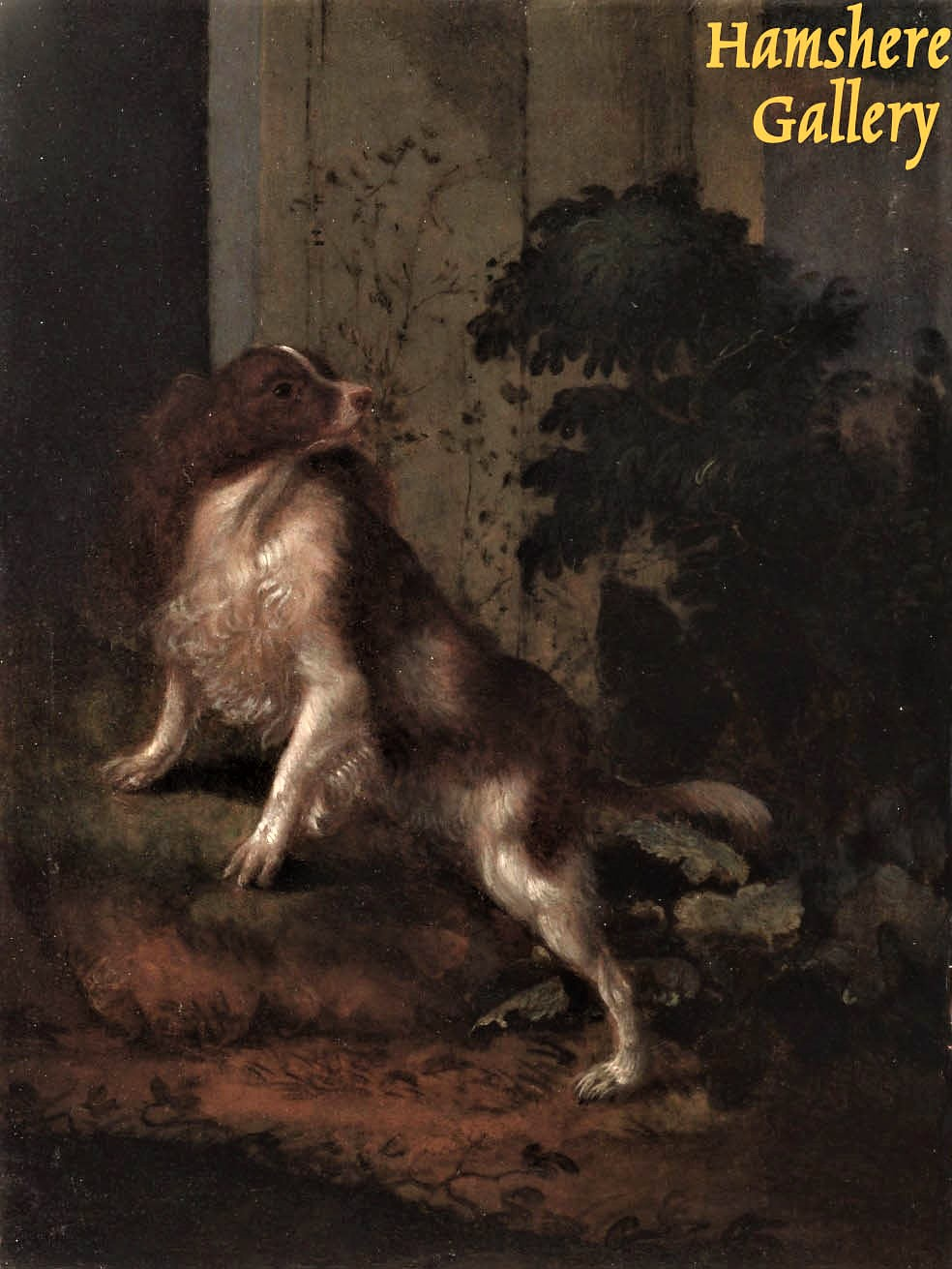 Click to see full size: 18th century oil on copper of a King Charles Cavalier Spaniel / Phalene, manner of Adriaen de Gryef