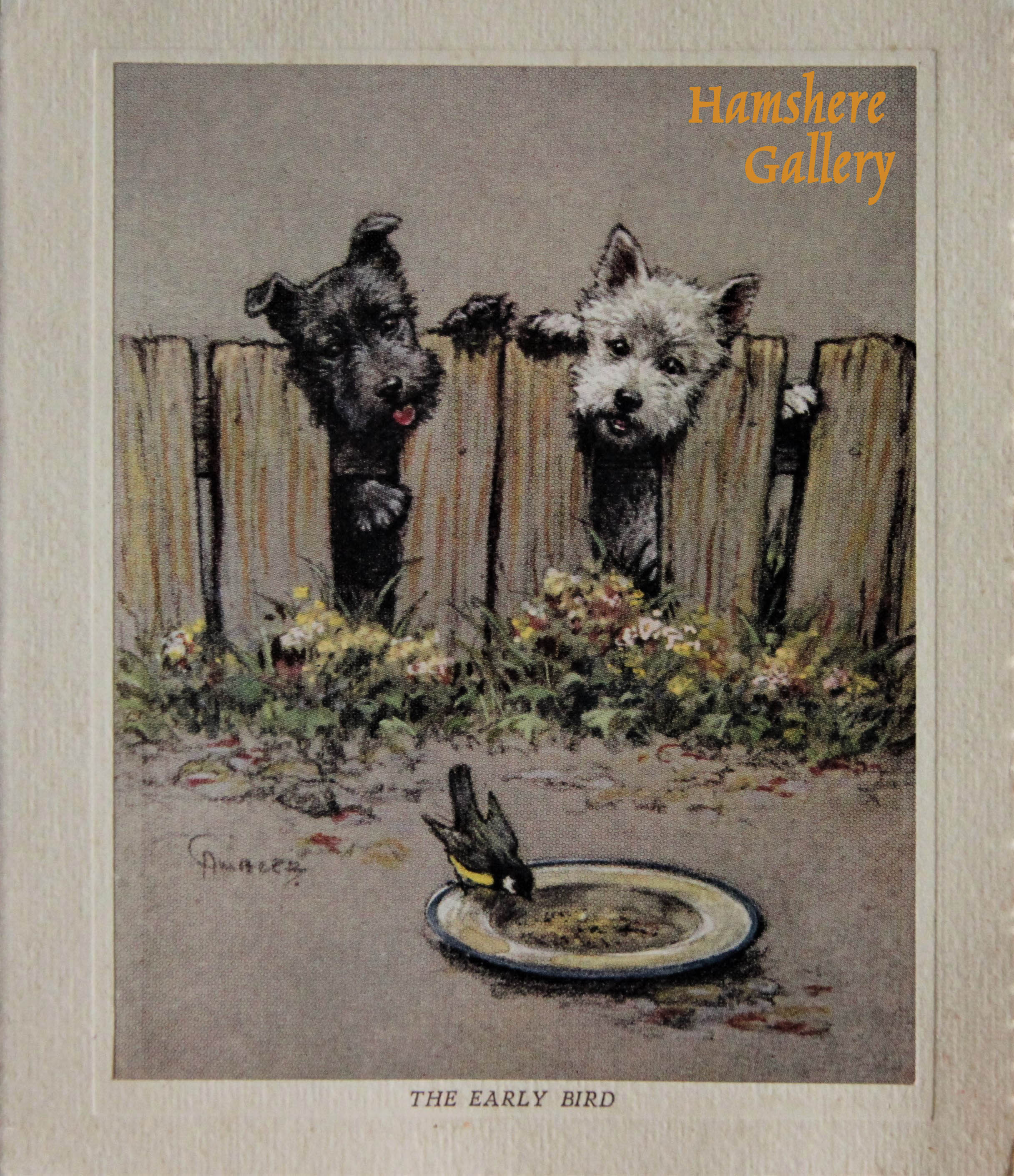 "Click to see full size: ""They Early Bird"" a Black and White Scottish Terrier Christmas card by Christopher Gifford Ambler (English, 1886-1965)"