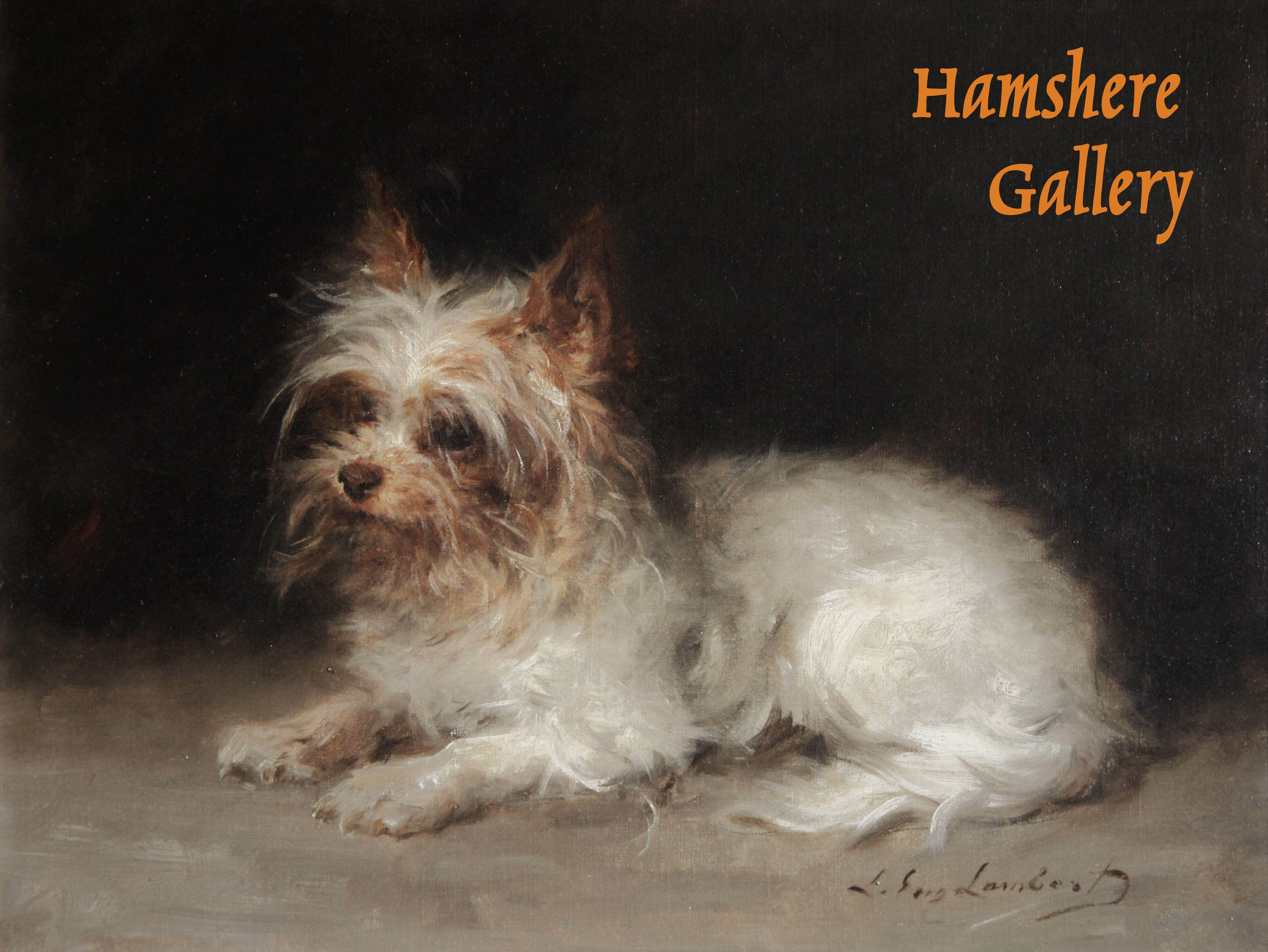 Click to see full size: Yorkshire Terrier
