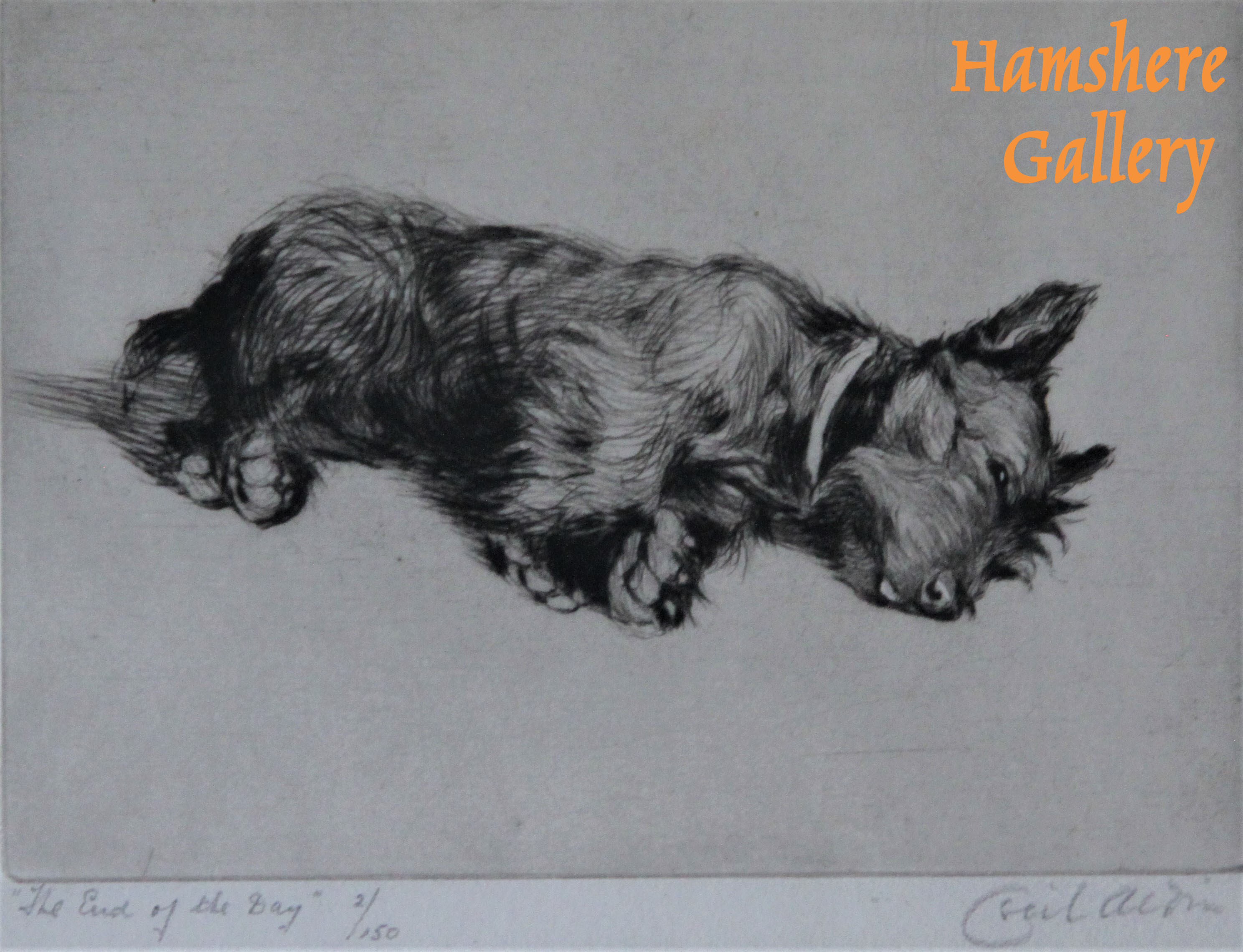 "Click to see full size: ""The End of the Day"" Scottish Terrier dry-point etching by Cecil Charles Windsor Aldin RBA"