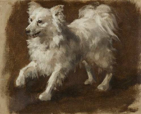 Click to see full size: 19th century oil study of a Spitz by - A mid-19th century oil sketch of prancing Spitz by Johann Matthias Ranftl (Austrian 1805 - 1854). Austrian 1840