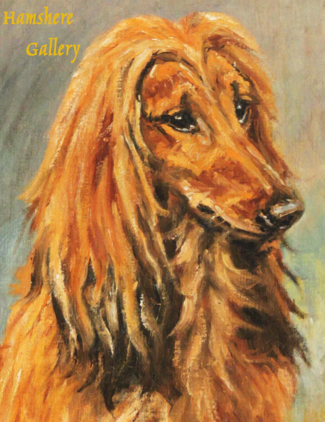"""Click to see full size: Afghan Hound """"Shiba of Chaman"""" by Thomas Frederick Daws RA (1878-1956)- Afghan Hound """"Shiba of Chaman"""" by Thomas Frederick Daws RA (1878-1956)"""