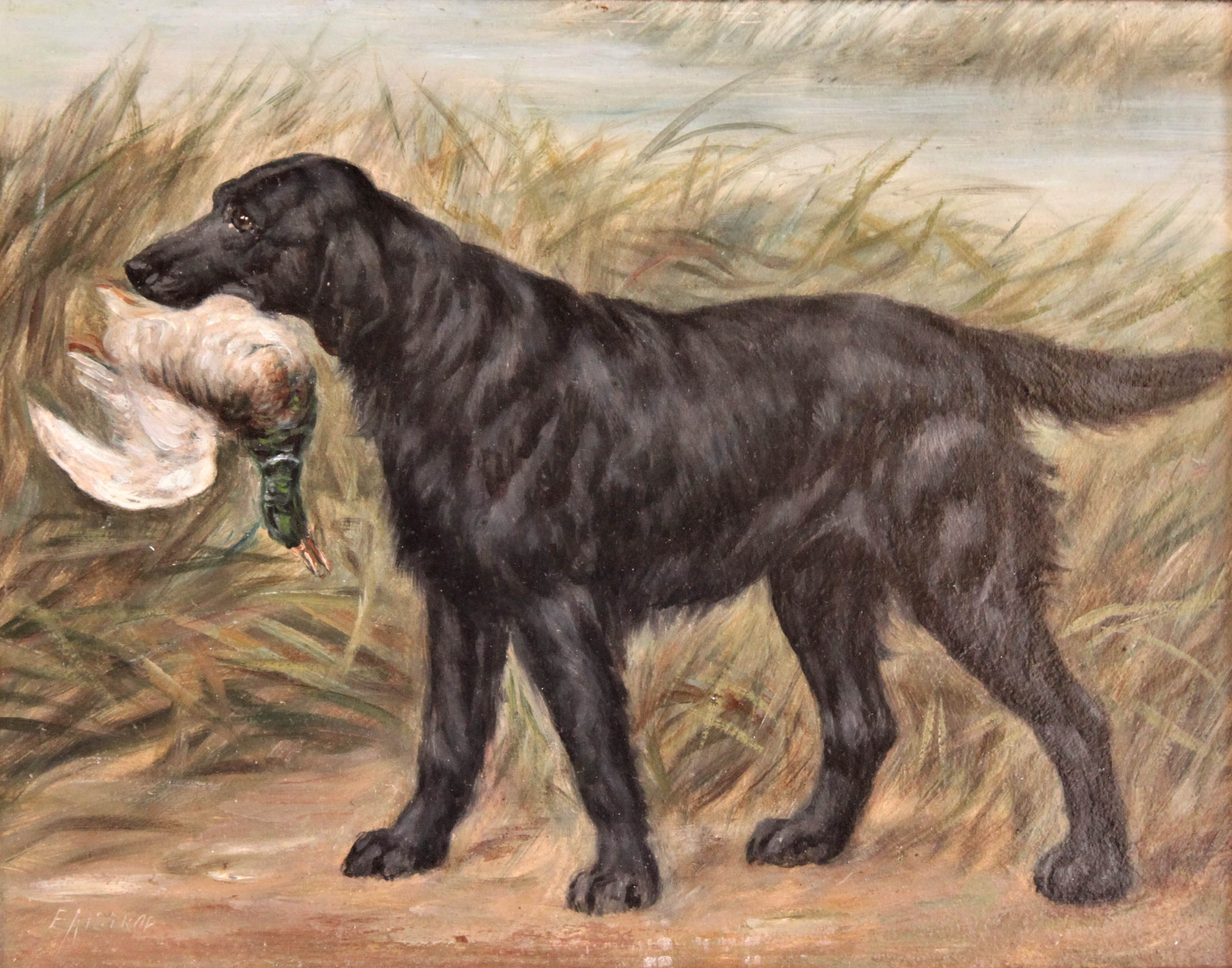 Click to see full size: An English oil of a Flat-coat Retriever by Edward Aistrop (English, mid-late 19th century).