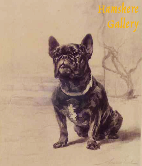 """Click to see full size: The French Bulldog """"Ch. Qui Qui of Amersham"""", photogravure after Maud Alice Earl (English, 1863-1943)"""
