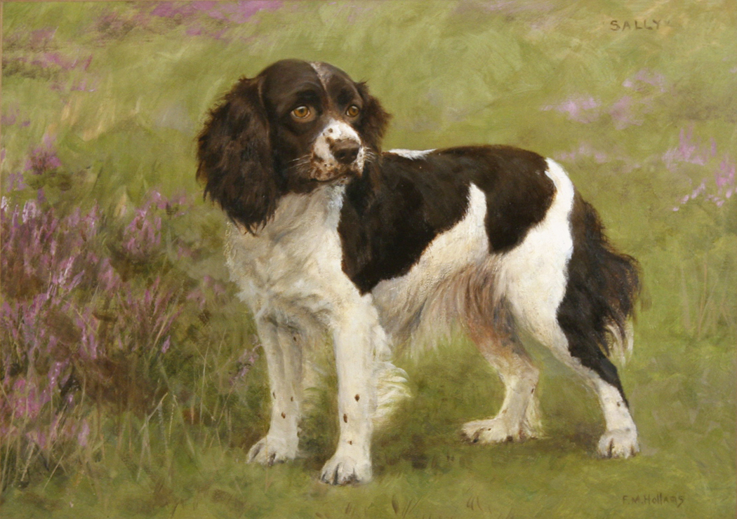 Click to see full size: English Springer Spaniel by Florence Mabel Hollams (1877 - 1963)