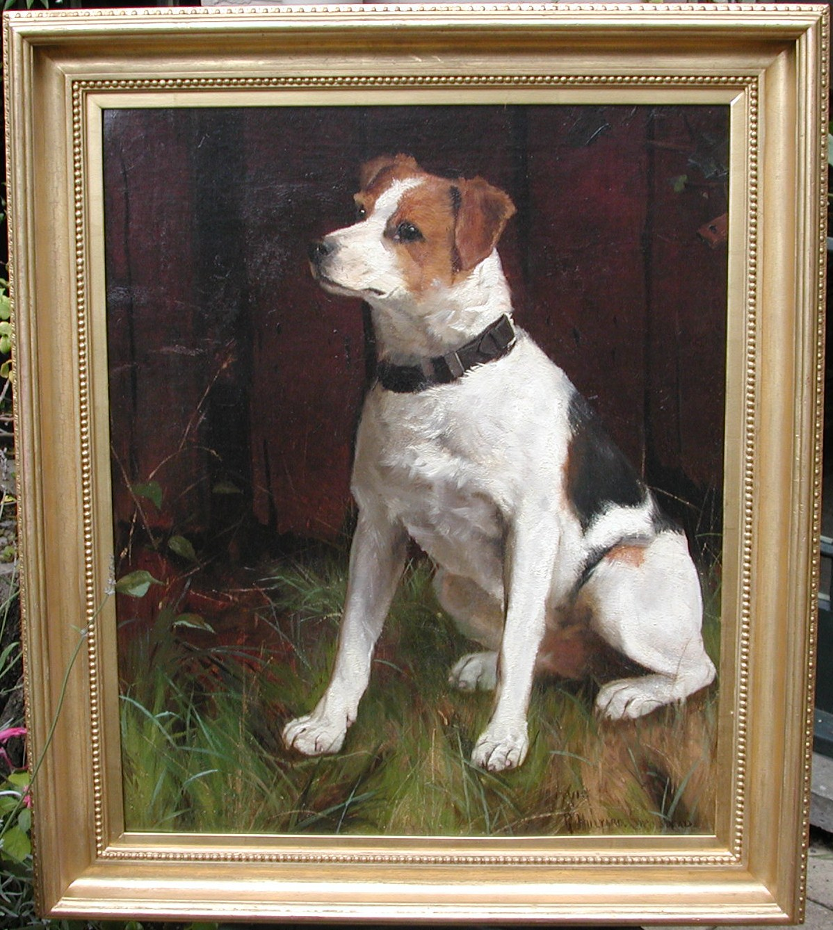 Click to see full size: Jack Russell- Jack Russell Oil Painting