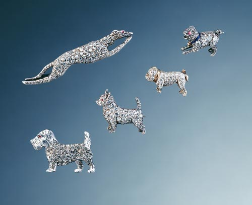 Click to see full size: Tim Flach - Crystals Dogs