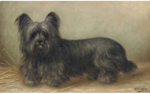 Click to see full size: Skye Terrier- Z?lia Maria Klerkx, Belgium, blue-grey Skye Terrier? oil on canvas, circa 1900.